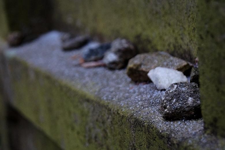 Třebíč Jewish cemetery 1
