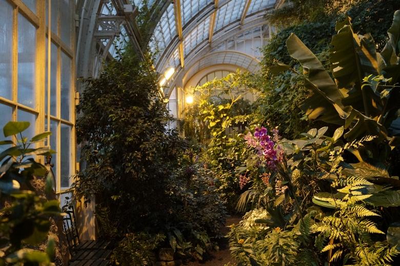 Wien Schmetterlingshaus